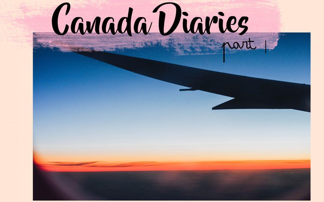 Canada Diaries Part ||  brrrr, wat koud!