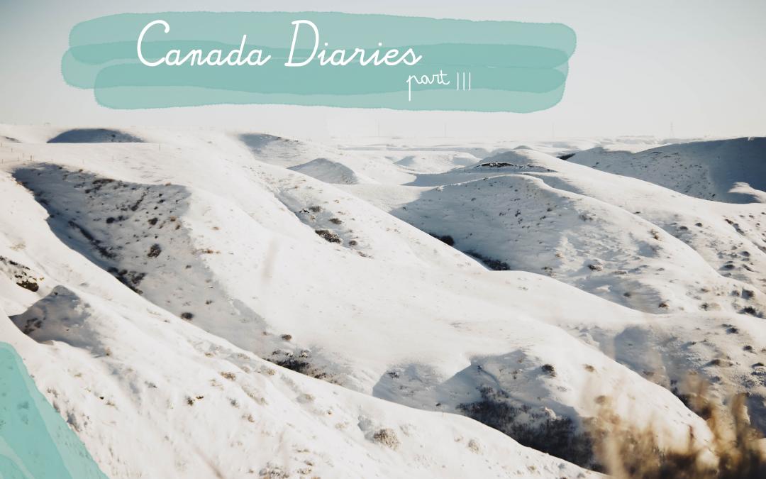 Canada Diaries |||   Skiën in de Rocky Mountains
